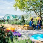 The new Health and Wellbeing Garden at RHS Malvern