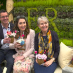 What it takes to build an Award Winning Garden at the Chelsea Flower Show
