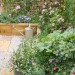 Plan your dream garden this spring bank holiday