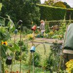 Royal Botanic Gardens Edinburgh Edible Gardening Project