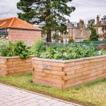 Our guide to raised beds