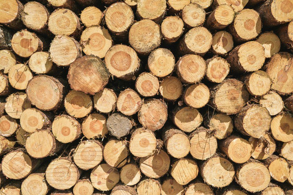 WoodBlocX - WoodBlocX