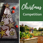 Christmas competition | WIN WoodBlocX and more