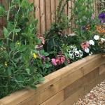 New build garden transformation