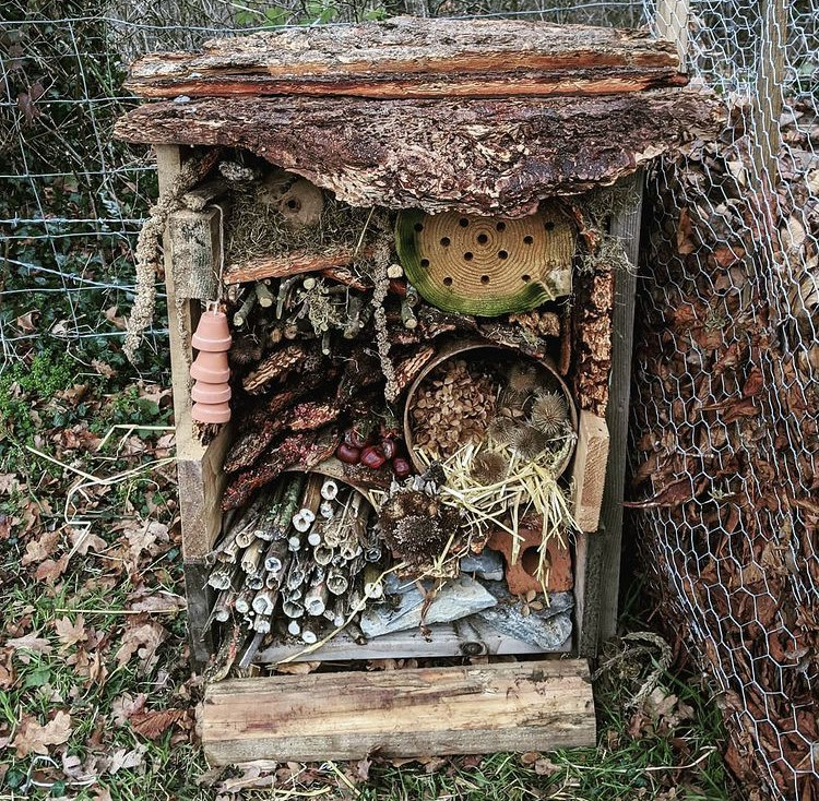 Lockdown garden activities for kids - Build an insect hotel