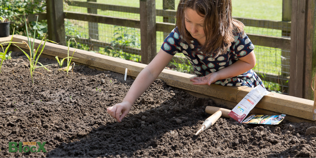 Lockdown garden activities for kids