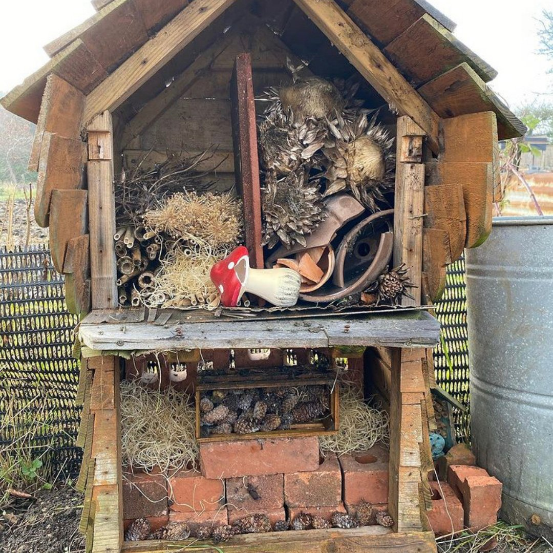 Lockdown garden activities for kids -Build an insect hotel