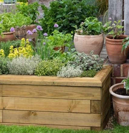 Small garden ideas - raised beds